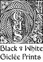 BLACK & WHITE GICLEE PRINTS